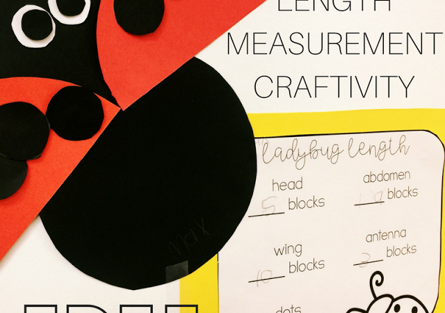 Ladybug Length Measurement Creativity