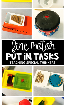 Fine Motor Put-in Tasks