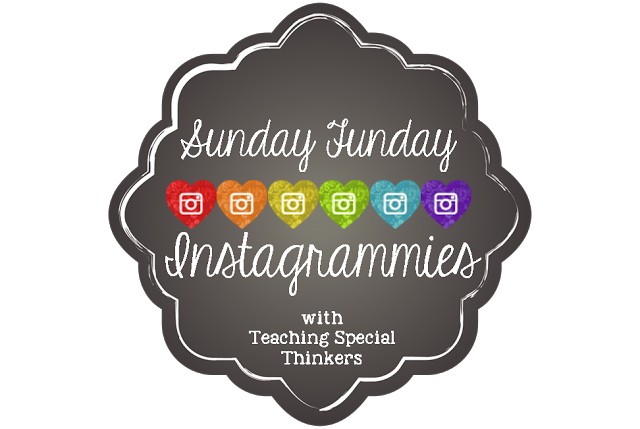Sunday Funday Instagrammies