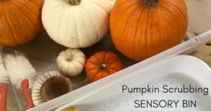 Pumpkin Scrubbing Sensory Bin