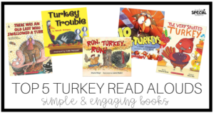 Top 5 Turkey Books