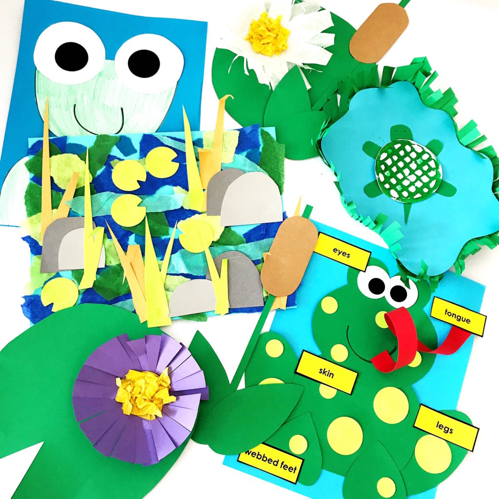 frog life cycle pond kids crafts