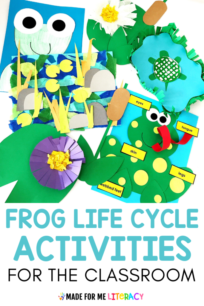 frog life cycle activities for kids